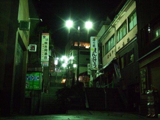 Kappo Ryokan Kasugaro : 夕食後に伊香保温泉街の大階段まで無料送迎してしてくれました