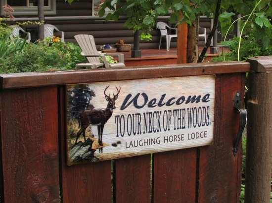 Laughing Horse Lodge : You really will feel welcome.