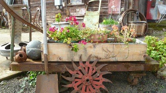 Riversdale Valley Farm : flower planter