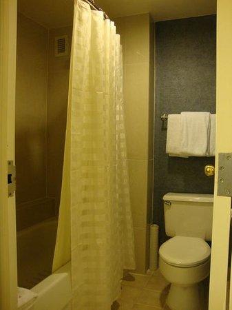 Hyatt Regency FairFax: washroom