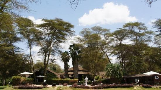 Ol Tukai Lodge: 庭