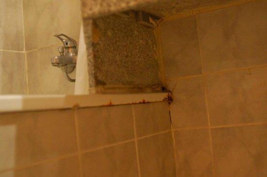 FERGUS Capi Playa: bathroom rust