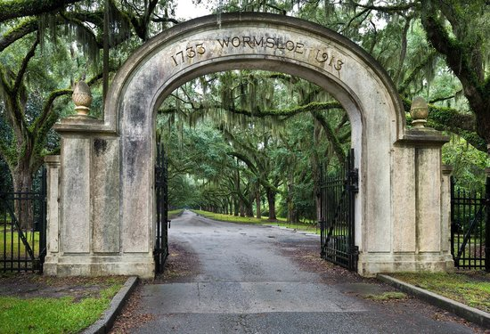 Wormsloe Plantation - Picture of All About Savannah Tours ...