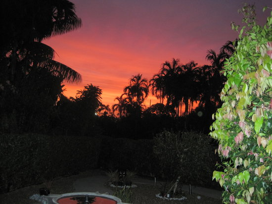 Bromeliad Bed and Breakfast: Sunset over our garden