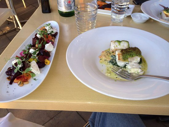 Kermadec Ocean Fresh Restaurant: Great fish and beet salad