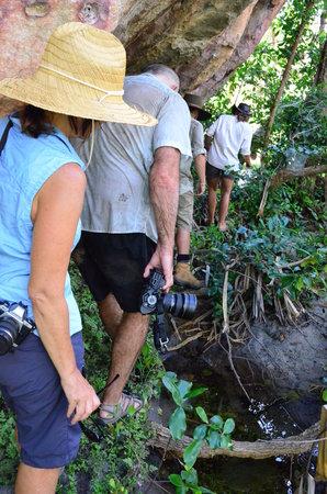 Davidson's Arnhemland Safari Lodge: Guided walks through the escarpment