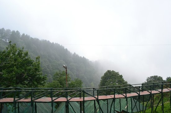 Cloud End Forest Resort: view from room