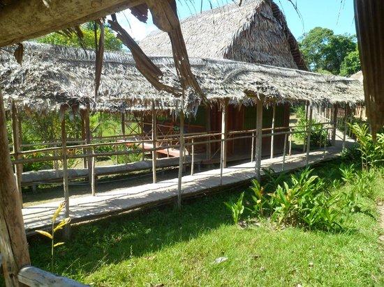 Amazon Rainforest Lodge: Areas