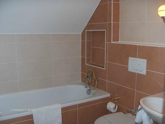 Hotel Pod Vezi : bagno