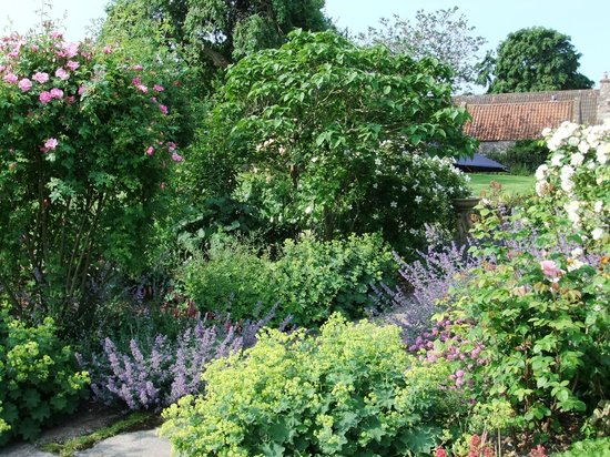 Coxley House: Beautiful Garden