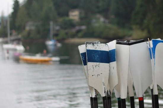 Deep Cove : all types of water activities, learn how at the classes offered