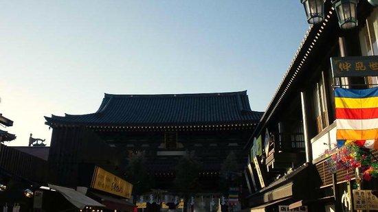 Kawasaki Daishi Heiken-ji Temple: 風景