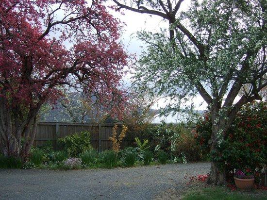 Huonville Guesthouse: Picturesque gardens around circular driveway