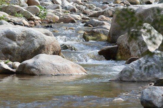 Au Bord de l'Eau : La rivière
