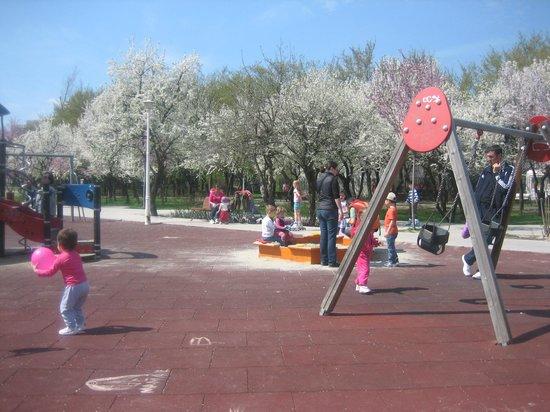 Parcul Alexandru Ioan Cuza: children playground