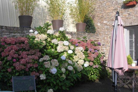 Le Clos des Hortensias: Entrée chambres d'hôtes