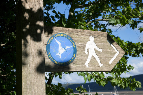 Plas Llanfair Holiday Cottages: Anglesey Coastal path walk