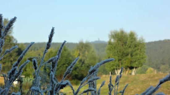 Elend - Natur pur mit Blick auf den Wurmberg