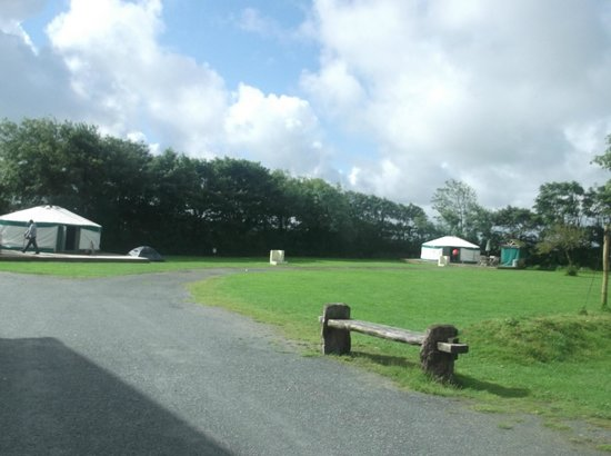 East Thorne-Cornwall Yurts and Cottages: Yurt Site