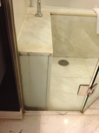Holiday Inn Central Plaza : Moldy Shower