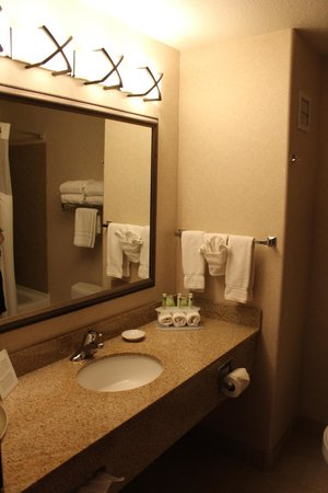Holiday Inn Express Custer: Bagno