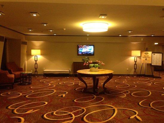 Sheraton Needham Hotel: Hotel