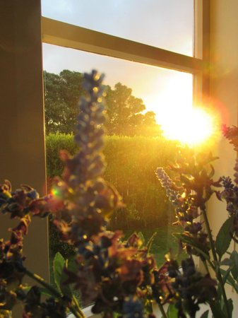 Carlton Gore Bed and Breakfast: Amanecer desde la suite