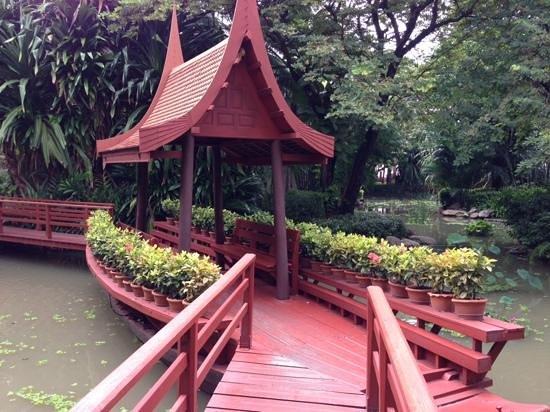 Hyatt Regency Hua Hin: Where we fed fish in the morning!