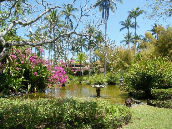 Melia Bali Indonesia: Hotel Gardens