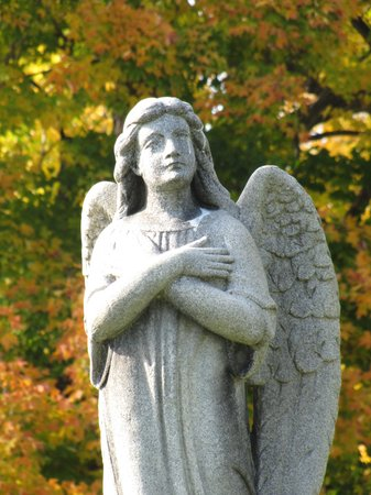 Mount Hope Cemetery : fall foilage