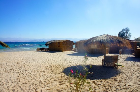 Utopia Beach: accommodation situated on the beach