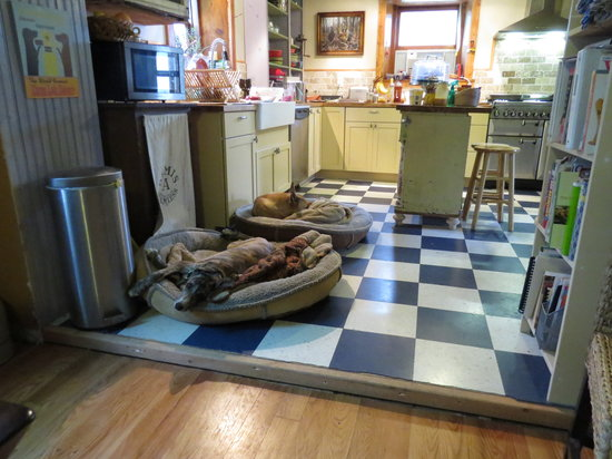 Lucky Dog Farmstay: Kitchen