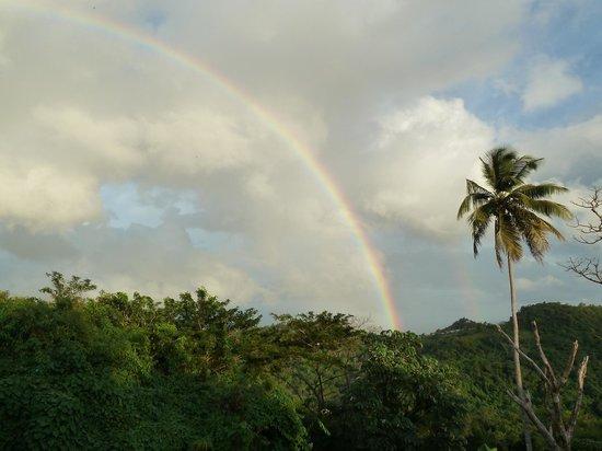 Friendship Bay: Rainbow
