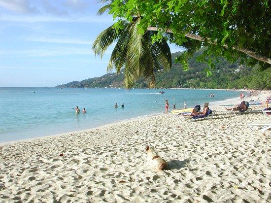 Coral Strand Smart Choice Hotel Seychelles: Strand