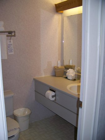 Bancroft Inn & Suites : Bathroom