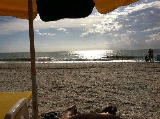The Charter Club of Marco Beach : gorgeous beach