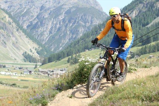 Guide Mountainbike Livigno: scendendo dal mottolino bike park