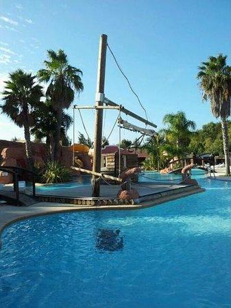 Camping Les Palmiers : une partie de la piscine...