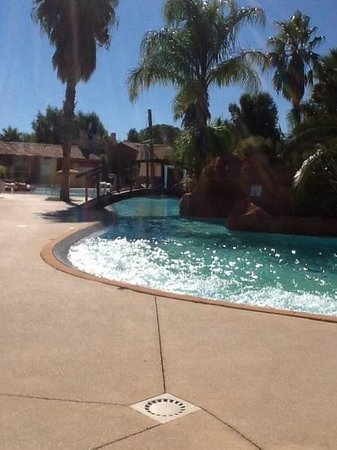 Camping les Palmiers : piscine