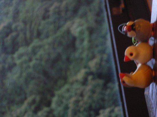 Okudogo Ichiyunomori: 山に囲まれています