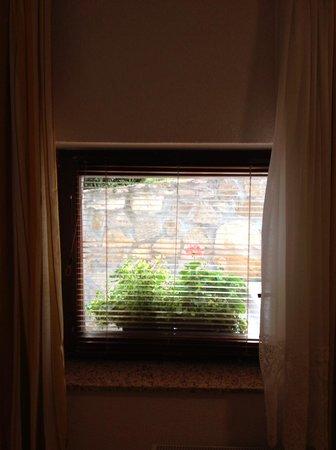 Pansion Breza: Small basement window