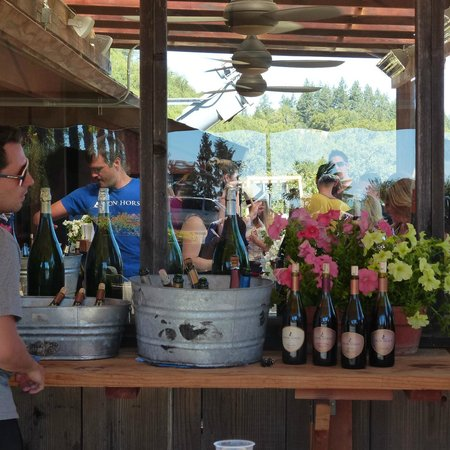 Reserve Wine Tours - Private Tours: Iron Horse WInery Russian River Valley