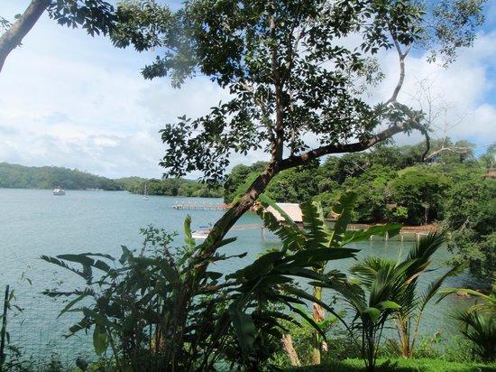 Hotel Bocas del Mar: Vista desde la habitación