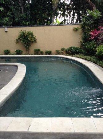 Nefatari Exclusive Villas: Pool