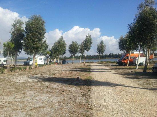 Camping Village Laguna Blu : campsite