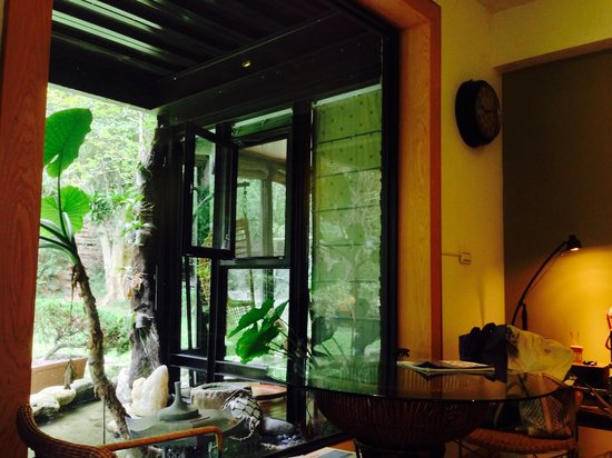 Echo villa: 一層客廳望向窗外