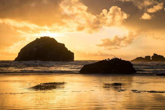 Bandon, OR: Face Rock at sunset