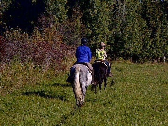 Honora Bay Riding Stables: crossing the meadows