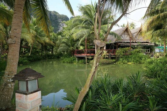 Green View Village Resort: Прудик на территории отеля