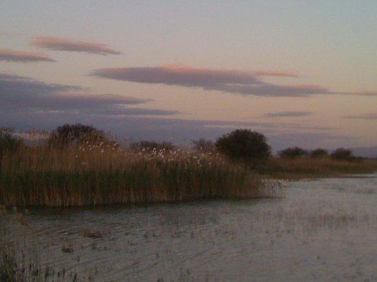 De Zeekoe Guest Farm: lake off logcabin